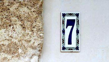 Gallery: Camera 7 (Suite)